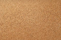 Empty cork notice board texture and background Royalty Free Stock Photo