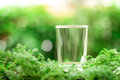 a empty glass of cool fresh water on natural green background Royalty Free Stock Photo