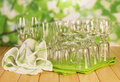 Empty glasses the set on natural background Royalty Free Stock Images