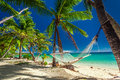 Empty hammock in the shade of palm trees on tropical fiji islands Stock Photography