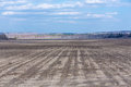 Empty not plowed field after winter Royalty Free Stock Photo