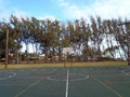 Empty outdoor basketball court in waimanalo old rusty with lights on wooden poles and pine needles on the during the day with tall Stock Images