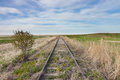 Empty Overgrown Railway Tracks in Canadian Prairie Royalty Free Stock Photo