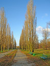 Empty park Royalty Free Stock Photos
