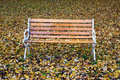 Empty park bench Stock Image