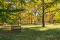 Empty park bench end of summer an in a state signifying the and the beginning fall when leaves begin to display their autumn Royalty Free Stock Photos