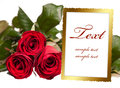 Empty photo frame with roses Royalty Free Stock Photo
