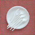 Empty plastic plate disposable on a checkered cloth Royalty Free Stock Photo