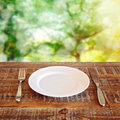 Empty plate with knife and fork over garden background bokeh Stock Photography