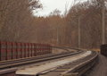 Empty railroad though forest at winter time Royalty Free Stock Photo