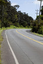 Empty road curving through hawaii vegetation curve in blue sky Stock Photography