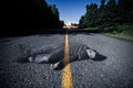 Empty road with dead bodys ghost in the middle at night Royalty Free Stock Photography