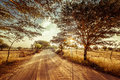 Empty road going through rural landscape under sunset sky with sun beams dry season in southeast asia myanmar burma nature Royalty Free Stock Image