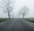 Empty road at morning autumn day black Royalty Free Stock Photo