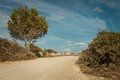 Empty road in sunlight blue sky destination countryside background Stock Photo