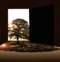 Empty room and tree with door Royalty Free Stock Photo