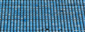 Empty rows of blue stadium seats Royalty Free Stock Images