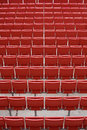 Empty rows of stadium seats Royalty Free Stock Photo