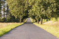 Empty rural straight asphalt route poland Royalty Free Stock Photography