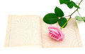 Empty sheet of old paper and pink rose with green leaves isolated on a white background Stock Photography