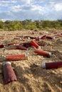 Empty shot gun shells Stock Images