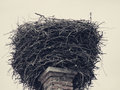 Empty stork nest vintage photo of an Royalty Free Stock Images