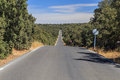 Empty straight road an runs between tree and over a hill traffic sign indicating end of restrictions Royalty Free Stock Photo