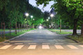 Empty street at night Royalty Free Stock Photo