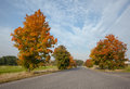 Empty tarmac country road along trees and landscape view of an Royalty Free Stock Image