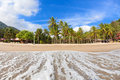 Empty tropical beach with coconut palms Stock Images