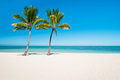 Empty tropical beach with palms Royalty Free Stock Photography