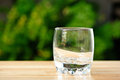 Empty whisky glass Royalty Free Stock Photo