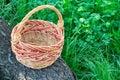 Empty wicker basket on trunk of fallen tree