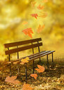 Empty wooden bench Stock Images