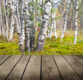 Empty wooden deck table in the park ready for product montage display Stock Photography