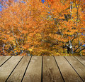 Empty wooden deck table in the park ready for product montage display Royalty Free Stock Photo