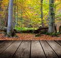 Empty wooden deck table in the park ready for product montage display Royalty Free Stock Photography