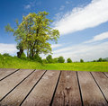 Empty wooden deck table in the park ready for product montage display Royalty Free Stock Photos
