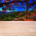 Empty wooden table over nature background ready for montage Stock Image