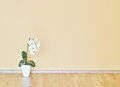 Empty yellow wall and wooden floor room Stock Images