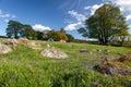 Emsworthy mire on dartmoor spring at near widecombe in the moor darmoor national park in devon Stock Photography