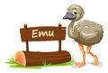 Emu and name plate Royalty Free Stock Photo