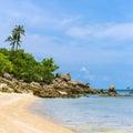 En h�rlig tropisk strand med palmtr�d p� den koh phangan �n Royaltyfria Bilder
