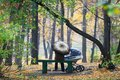En stationnement d'automne Photos libres de droits