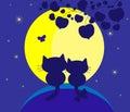Enamoured cats Stock Photo