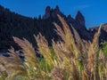Enchanted Valley Royalty Free Stock Photo