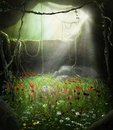 Enchanting Fairy Cave Filled with Flowers