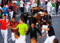 Encierro - Running of the Bulls Royalty Free Stock Photo