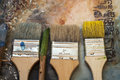 Encoustic brush display of brushes on top of an encaustic painting with sienna tones Royalty Free Stock Photo