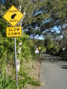 Endangered bandicoots road sign warning traffic to slow down due to in the area Stock Image